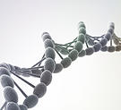 calgary se acupuncturist - david rose - image of dna